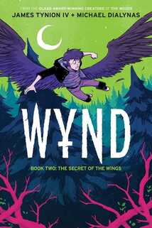 Limited Edition cover of Wynd volume 1